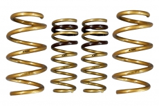 ARK Performance LS1102-0103 GT-S Lowering Springs - 08+ Infiniti G37 Coupe (RWD only)