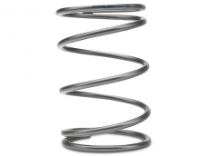 Turbosmart Wastegate Acutator Spring, 10 PSI, Brown/Blue - Outer