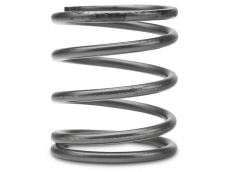 Turbosmart Wastegate Acutator Spring, 3 PSI, Brown/Black - Inner
